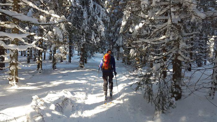 HomeCamper_Le camping en hiver