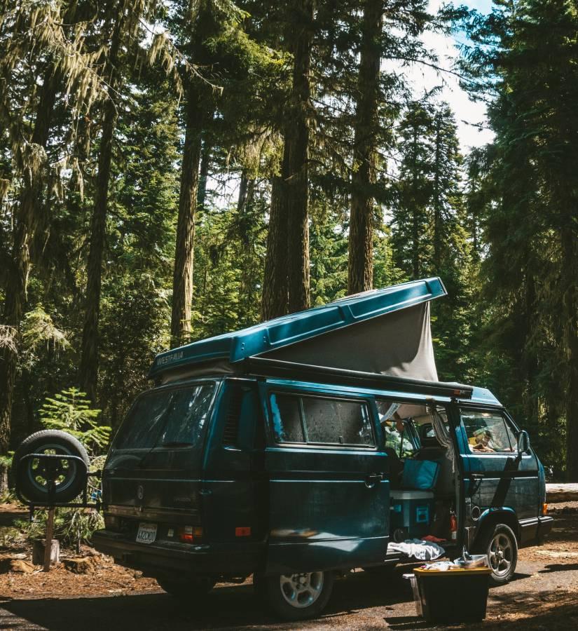 Intérêt Van - Van en forêt