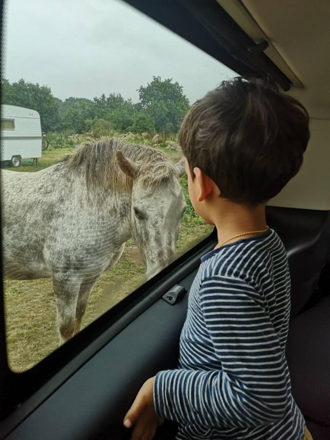 Un road trip en Bretagne en famille pour se mettre au vert, profiter des grands espaces, loin de la foule, en famille